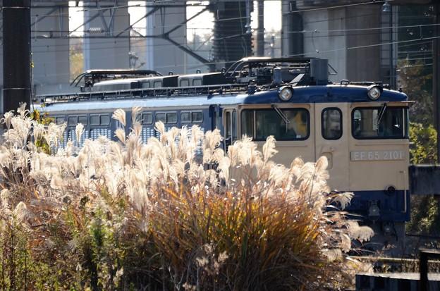 Photos: 晩秋の貨物駅にEF65 2101原色機