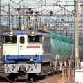 EF65 2139牽引8584レ宇都宮貨物(タ)発車