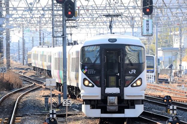 E257系M-115編成成田山初詣やまなし号