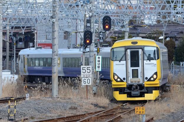 E257系500番台NB-11編成成田初詣ぐんま号