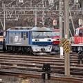 機関車いっぱいの貨物駅(2)
