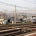Photos: 桜咲く南海和歌山市構内と7000系