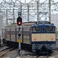 Photos: EF65 501&EF64 37プッシュプル団臨返却回送