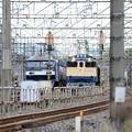 Photos: EF65 1105号機牽引宇都宮配給8936レ宇都宮貨物(タ)発車待機
