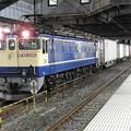 Photos: EF65 2068原色機牽引4073レ小山11番停車