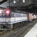 Photos: EF65 2975号機牽引4073レ小山11番待避