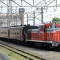 Photos: DE10 1685+50系小山16番入線
