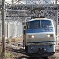 Photos: EF66-116号機ひとり旅