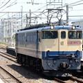 Photos: EF65 2066原色単機4072レ小金井通過