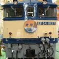 Photos: EF64 1037国鉄色「北陸」HM付き