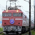 EF81 81号機牽引カシオペア紀行号