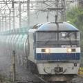 桃太郎173号機牽引8586レ雨の栗橋通過
