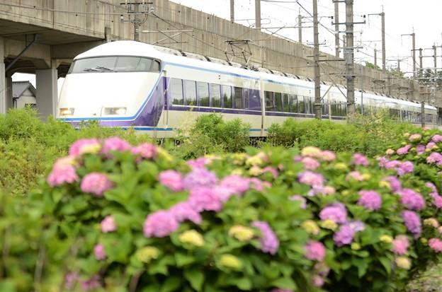 Photos: 臨時特急スペーシア那須野号大宮行き