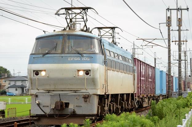 EF66 105号機牽引4093レ