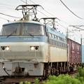 Photos: EF66 105号機牽引4093レ