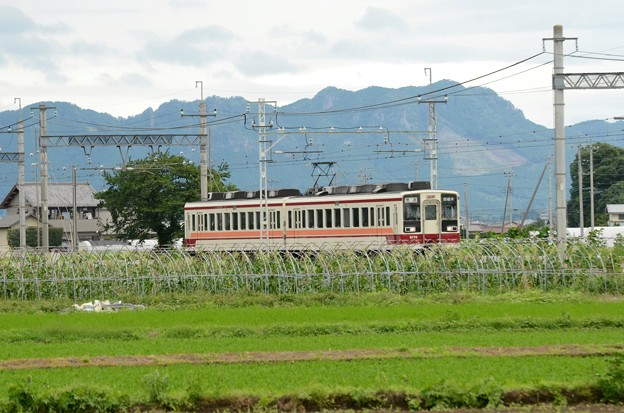 Photos: 古賀志山を背に行く東武6050系