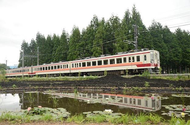 睡蓮咲く倉ケ崎SL花畑を行く東武6050系