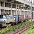 Photos: EF66 131号機牽引4093レ宇都宮貨物(タ)13番入線