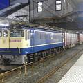 Photos: EF65原色2070号機牽引4073レ小山11番待避