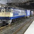 Photos: EF65 2091原色機牽引4073レ小山11番待避
