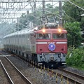 Photos: EF81 81牽引カシオペア紀行号