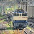 貨物駅で休息するEF65 2065原色機