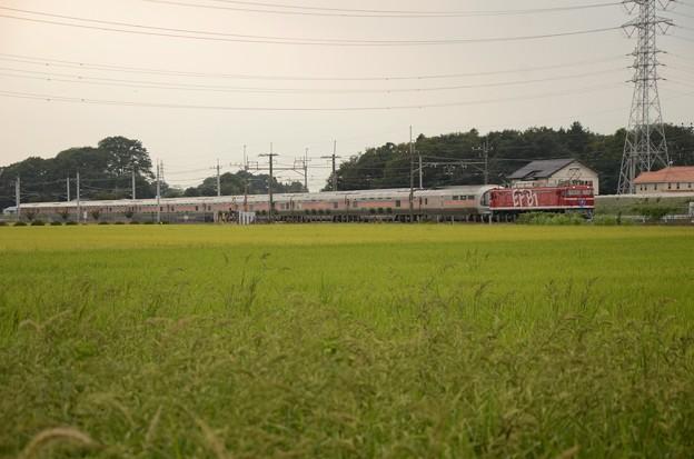 EF81 95号機牽引E26 系カシオペア紀行号