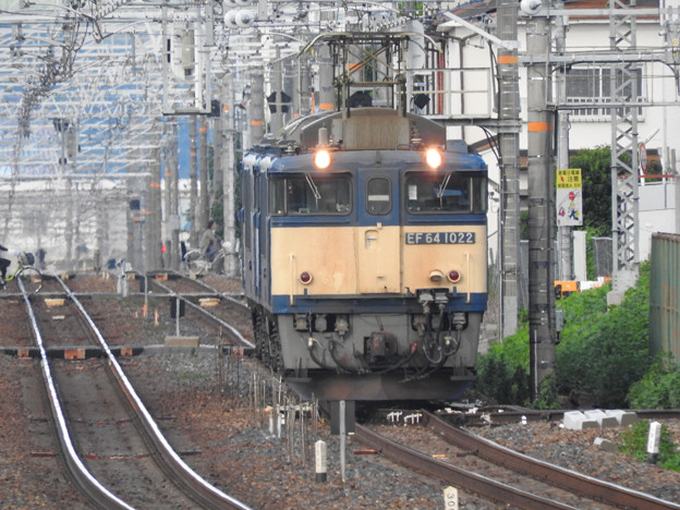 Photos: EF64 1022原色機