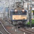 Photos: EF64 1022原色機