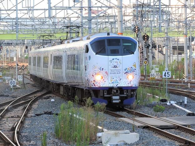 281系ハローキティ特急はるか新大阪3番入線