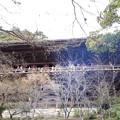 Photos: 2018.1.3(兵庫/姫路/書写山圓教寺-摩尼殿  )