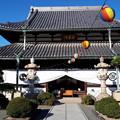 Photos: 2018.1.3(兵庫/赤穂/花岳寺/本堂)