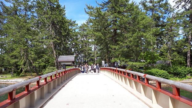 Photos: 2018.5.20(京都/天橋立/回旋橋)