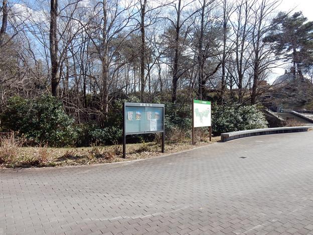 20180211-国営武蔵丘陵森林公園-西口広場