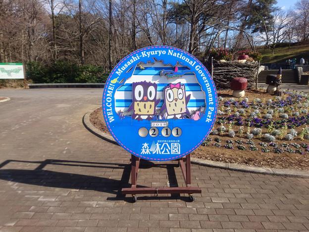 20180211-国営武蔵丘陵森林公園-西口広場-日付看板