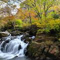 写真: 秋の滝