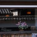 写真: 窓辺の花