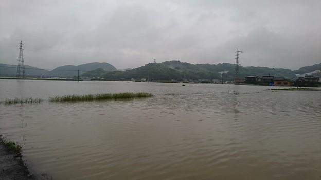 七夕豪雨5