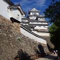 Photos: 姫路城3