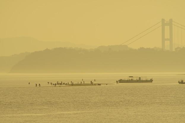 Photos: 海を渡る人(答え)