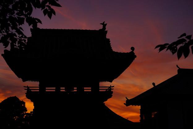 Photos: 夕焼け空の切り絵 4