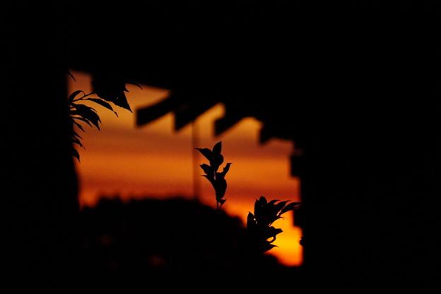 夕焼け空の切り絵 15