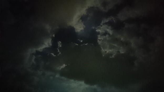 月夜を覆う