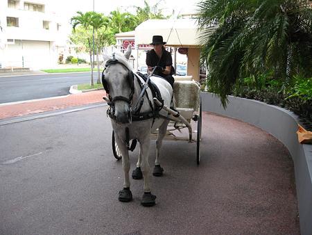 081122 ホテルで見た馬車