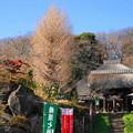 Photos: 180106_21_伽藍の様子・S18200(西方寺) (1)