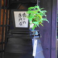 Photos: 180715_13_街並みの様子・S18200・α60(飛騨高山) (53)