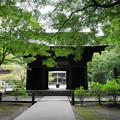Photos: 180911_14_三門・S1650・α60(妙本寺) (1)