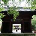 Photos: 180911_14_三門・S1650・α60(妙本寺) (3)
