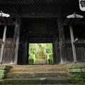 180911_59_三門からみた苔の階段・S1650・α60(杉本寺) (3)