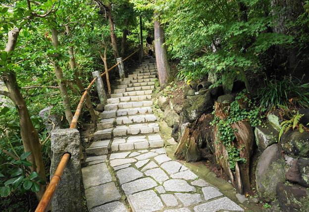 180911_63_脇の階段で観音堂へ・S1650・α60(杉本寺) (3)
